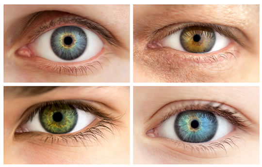 Eye Color can Predict a Person who is More Competitive, Egocentric And Skeptical